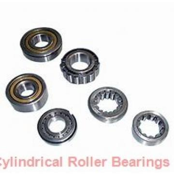 60 mm x 110 mm x 28 mm  Fersa NUP2212FMNR/C3 cylindrical roller bearings
